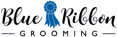 Blue Ribbon Dog and Cat Grooming
